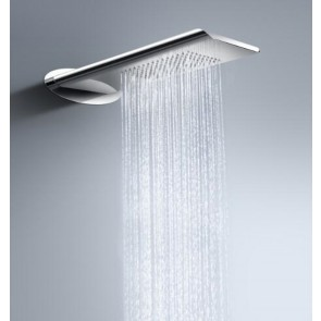 Showerhead Stainless Steel - 2-Function